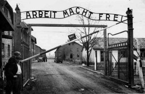 Voilà pourquoi je n'aime ni les nazis ni le travail.