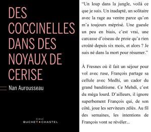 Couverture Des coccinelles dans des noyaux de cerise Nan Aurousseau
