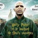 Détournement Voldemort Fleur Sauvage par Un K à part