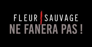 Logo Fleur Sauvage ne fanera pas