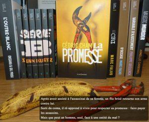 Couverture La promesse Cédric Cham