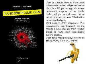 Couverture plusdeprobleme com Fabrice Pichon éditions Lajouanie