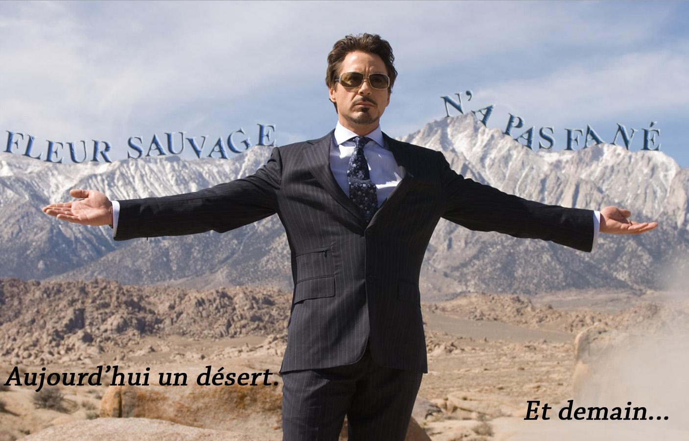 Détournement Tony Stark Fleur Sauvage par Un K à part