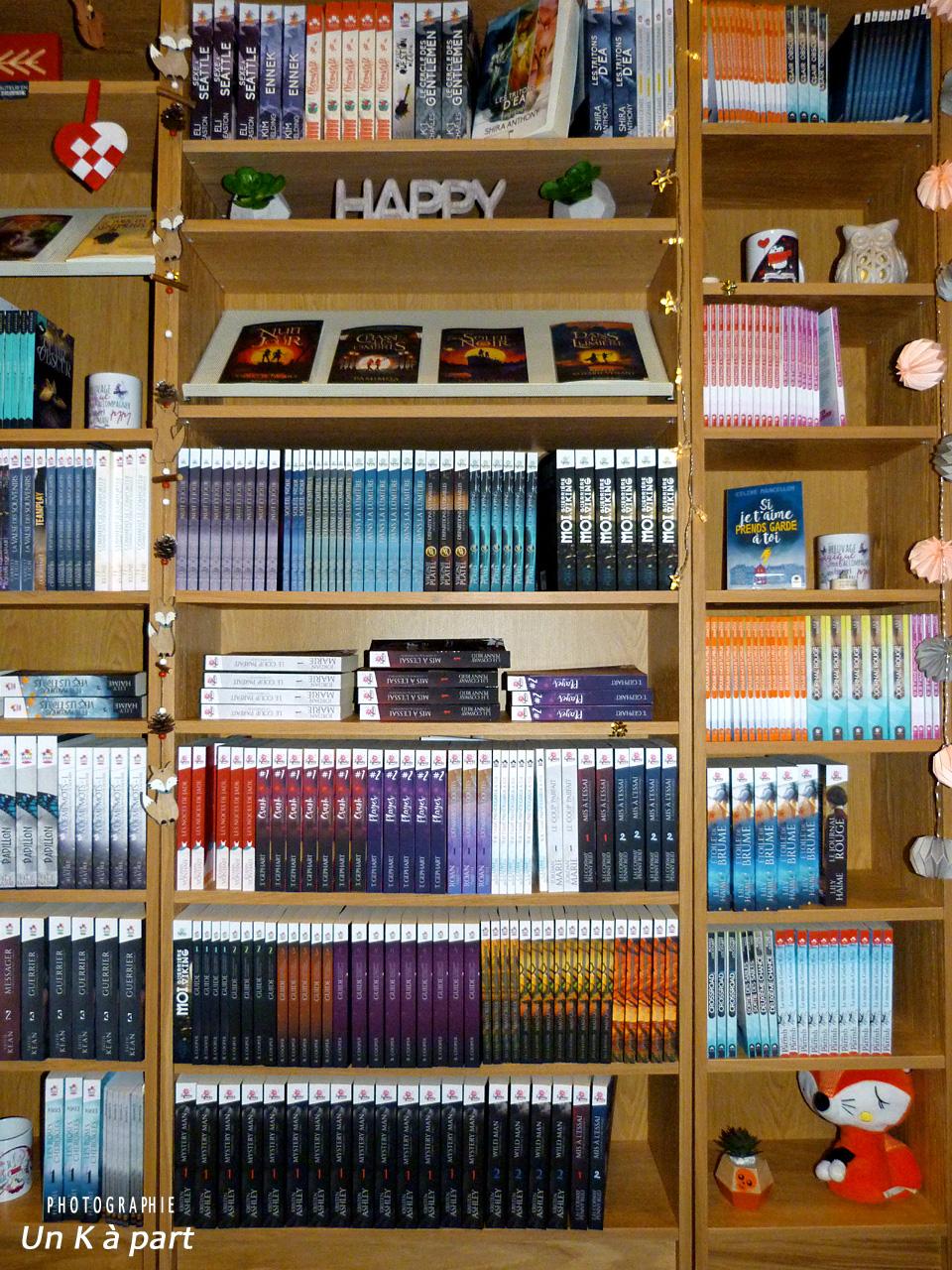 Festival livre du romantique bibliothèque